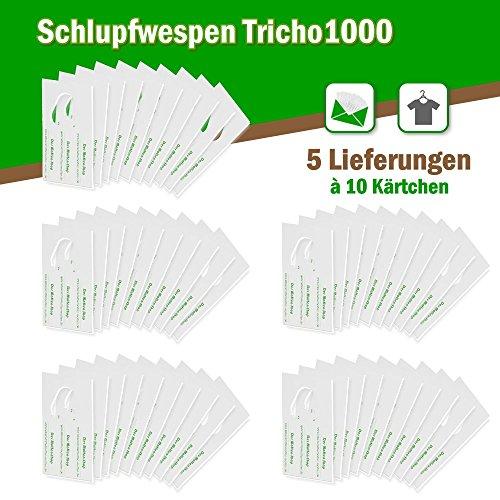 Schlupfwespen gegen Kleidermotten 10 Stück 1000-er Kärtchen x 5 Lieferungen (AKTIONSPACK) (10x10 Teppiche)