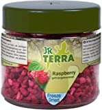 Terra Freeze Dried Raspberry Himbeere