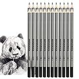 Jansroad Crayon de Croquis Crayons de Dessin , Kit de 18 Crayons de Graphite 9H au 14B pour Adultes et Enfants Débutants Artiste