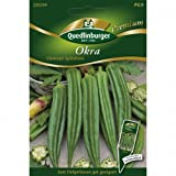 Gemüse-Eibisch Okra Clemson Spineless
