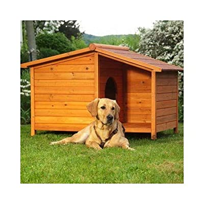 Spike Special Dog Kennel Sturdy & Attractive Outdoor Kennel with Pitched Roof & Sheltered Patio Pre-oiled Spruce Wood & Waterproof Roof FREE Royal Canin Veterinary Diet Dog Hypoallergenic DR 21 2kg by Spike