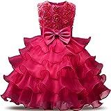 NNJXD Vestito da Ragazza Festa in Pizzo per Bambini Abiti da Sposa Taglia(70) 0-6 Mese Fiore Colore rosa