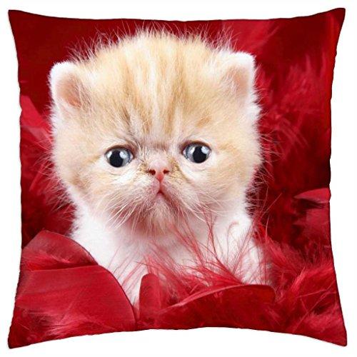 iRocket - precious kitty - Throw Pillow Cover (24