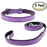 Newtensina Stilvolle Hundehalsbänder und Leinen Set Weich Wildleder Niedlich Bling Hundehalsband mit Strass und Leine für kleine Hunde