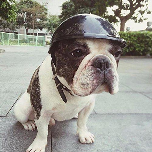 Dairyshop Pet Dog Sbarazzamento tappi casco, plastica ABS Doggie Puppy cute moto bici Cosplay cappello New