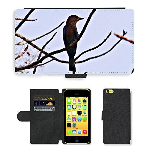 Just Mobile pour Hot Style Téléphone portable étui portefeuille en cuir PU avec fente pour carte//m00139645Rouleau indien oiseaux coracia bengalensis//Apple iPhone 5C
