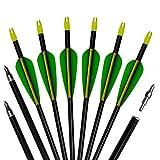 3Z Archery Arc de chasse en aluminium de tir à l'arc de flèches de 12pack avec des bouts modifiables 20-60lbs composé et arc recourbé