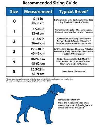 Halti Hundehalfter in schwarz – Größe 4 - 3