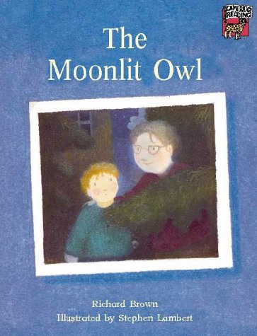 The moonlit owl