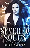 Severed Souls (Severed Wings Book 4): Volume 4