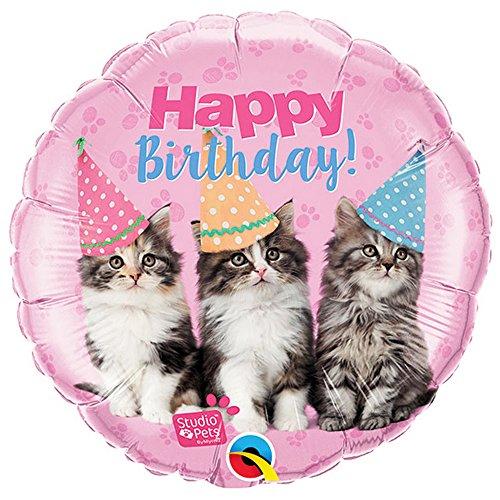 Qualatex Studio Haustiere Alles Gute zum Geburtstag Kätzchen 18 Zoll Folienballon