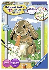 Ravensburger 4005556280223 Libro y página para Colorear Kit de Pintura por números - Libros y páginas para Colorear (Kit de Pintura por números, 1 páginas, Child, Niño/niña, 7 año(s), 13 cm)