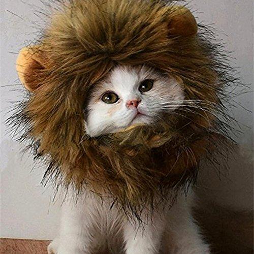 mit lustigen Motiv für Weihnachten Halloween Partei Kostüm Perücke Lion Mane, waschbar, bequeme Kleidung, mit Löwen-Aktivitäten (Lustige Karton Halloween Kostüme)