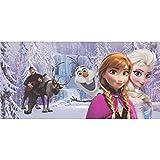Disney Bild Eiskönigin Frozen Kinderbild Mädchen Jungen lila blau 33x70 cm