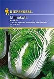 Sperli Gemüsesamen Chinakohl Michihili, grün