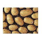 Seed Potato Vivaldi 2kg