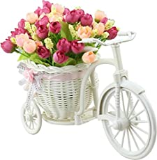 MK Small Flower Cycle Plastic Basket Cycle and Plant Showpiece Flowers not Included Assorted Color