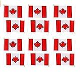 Xiton Applikation Hand winkt Kanada Canadian National Flaggen Kunststoff Polen 21x 14cm 12Stück