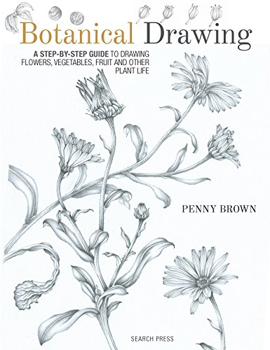Botanical Drawing: A Step-by-Step Guide to Drawing Flowers, Vegetables, Fruit and Other Plant Life por Penny Brown