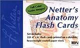 Netter's Anatomy Flash Cards (Netter Basic Science)