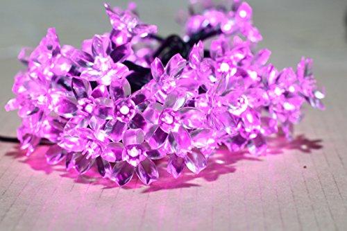 Dealbeta 5m 50Led/ Leführt Pfirsichblüte Solar Lichterkette Led für im Freien Fairy Lichter ,Weihnachten Dekoration, Weihnachten, Partei, Garten, Hochzeit. (Rosa) (Solar Led Fairy Lichter)