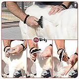 Hundebürste für eine perfekte Fellpflege von Hund und Katze, Unterfellbürste und Entfilzungskamm, geeignet für jede Haustiergröße & Haarlänge, Accessoire für Katzen- und Hundepflege von DAONLY (50 mm) - 7
