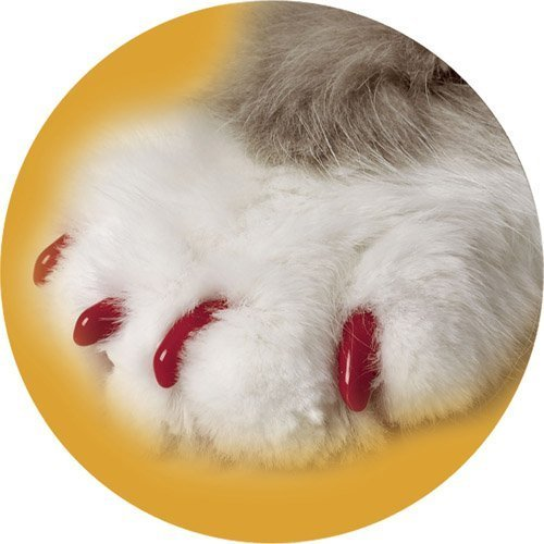 Canine Soft Claws Dog and Cat Nail Caps Take Home Kit, Medium, Red by Soft Claws -