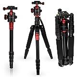 Caseflex Premium Alloy Professional Tripod Stand With Ball Head Mount for Digital Camera / Camcorder / DSLR / SLR / Video Cameras (Black & Red)