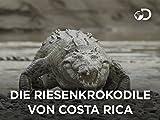 Die Riesenkrokodile von Costa Rica
