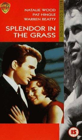 Preisvergleich Produktbild Splendor In The Grass [VHS] [UK Import]