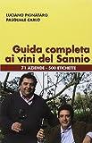 Guida completa ai vini del Sannio