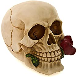 Figura Nemesis Now Rose Dead Skull (15cm)