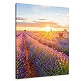 Impression d'art - Champ de lavande dans le sud de la France - 50 x 60 cm - Image sur toile - Paysages - Champs en fleurs - Provence - Lilas...