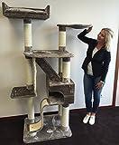 Kratzbaum große katze Kilimandjaro Plus Grau. 35KG!. Sisalstämme 12cmØ Katzenkratzbaum für große Katzen. Europäische Qualität