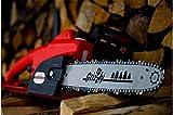 Grizzly Elektro Kettensäge, Motorsäge, elektrische Kettensäge mit Metallgetriebe, 1800 W, 35,5 cm Schnittlänge, Chromekette, autom. Kettenschmierung, Kabelzugentlastung, Kettenbremse Vergleich