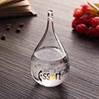 Essort Storm Glass, Water Drop Weather Forecast Storm Bottle, Weather Storm Glass Barometer, Weather Monitor, Christmas, Valentine's Day Gift For Children, Lover and Friends White