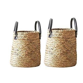 Brownrolly – 2 cestas de Mimbre para el Vientre con Asas, para Picnic, macetas y Bolsa de Playa