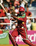 Best Affiches de film Films Indie - THEPRINTSHOP Édition limitée Brian Lara de cricket Photo Review