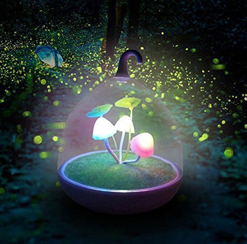 Ultra Magic Garden Portable nachtlicht dimmbar Lampe Mushroom LED Sensor Touch Night Lights Low Stromverbrauch LED Nacht Licht für Kids Night Light Baby Kinder