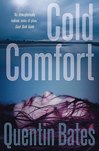 Cold Comfort (Gunnhildur Mystery)
