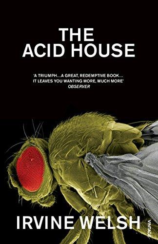 The Acid House (Roman)