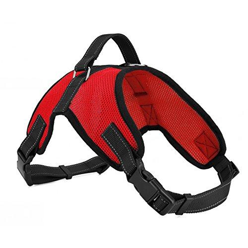 Pflicht Der Brust (Verstellbares Hundegeschirr, GB4Hund Halsband gepolstert extra Brust Reflektierende Gurte mit Griff hält Ihren Hund sicher auf Spaziergänge und Autofahrten)