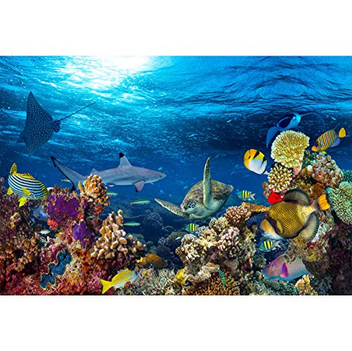 YongFoto 2,2x1,5m Vinyl Foto Hintergrund Buntes Unterwasserleben Hai Schildkröte Tropischer Fisch Korallen Fotografie Hintergrund Partydekoration Geburtstag Fotoshooting Fotostudio Hintergründe