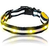 Leuchtendes LED- Sicherheits- Hundehalsband, extrem hell, längenverstellbar und mit 3 Leucht-Modi (S:19cm - 37cm, GELB)