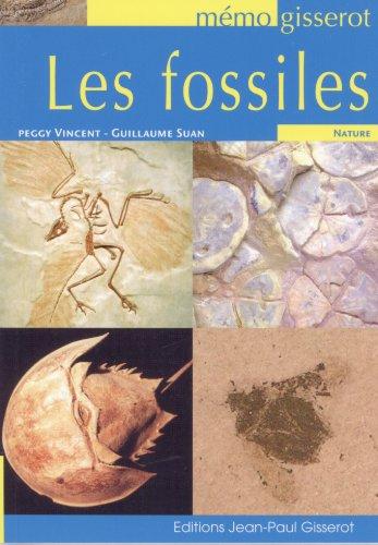 MEMO LES Fossiles