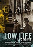 Low Life: Drinking, Drugging, Whoring, Murder, Corruption, Vice and Miscellaneous Mayhem in Old New York
