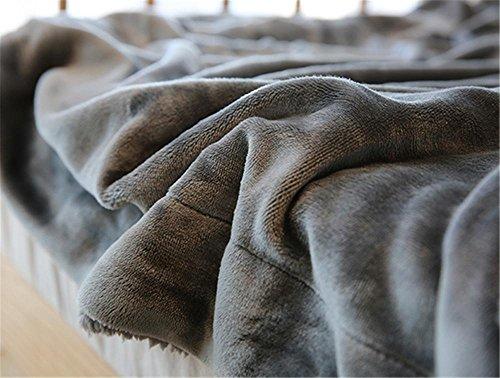 Flankel Decke dicken warmen Winter doppelseitige Decke , 200cmx230cm , coffee (Pulver-blau-teppich)
