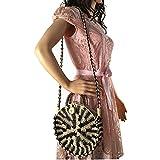 Zongsi Chic Handmade Rattan Woven Round Handbag Vintage Retro Straw Knitted Messenger Bag Lady Summer Beach Shoulder bag(Black)