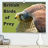 British Birds of Prey(Premium, hochwertiger DIN A2 Wandkalender 2020, Kunstdruck in Hochglanz): Birds of Prey found in the United Kingdom (Monthly calendar, 14 pages )
