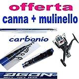 globe fishing Bolognese Metri 7 in Carbonio Canna da Pesca Mare Lago passata con Mulinello